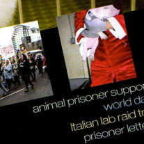 Ausschnitt aus dem Cover des neuen Animal Liberation Front Supporters Group Newsletters