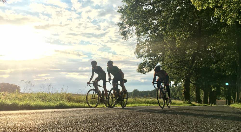 Drei Radfahrer fahren bei tief stehender Sonne durch eine Allee