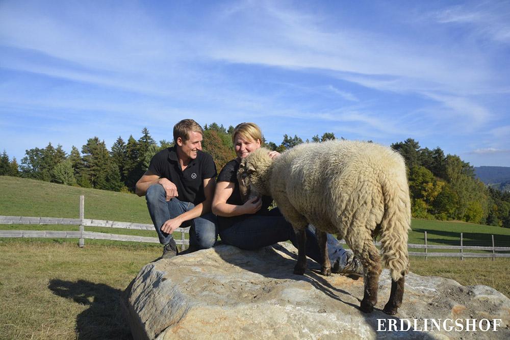 das Schaf Benedikt lässt sich von Birgit den Kopf kraulen. Daneben: Johannes