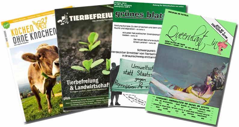 Abbildung der Magazine