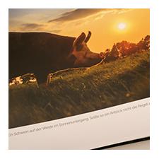 Rosa-Mariechen - aus dem Leben einer Sachensucherin. Ein schönes, reich bebildertes Buch über das Leben von Rosa-Mariechen auf Hot Butenland