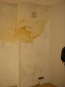 Feuchte Wand ohne Tapete und Anstrich