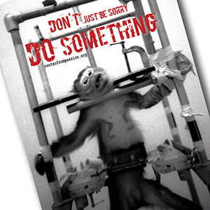 Don't just be sorry - do something! E.g. against animal testing!