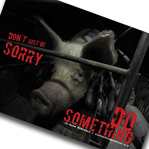 Don't just be sorry - do something! E.g. against animal factories!