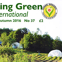 Titelbild des neuen Growing Green Magazins