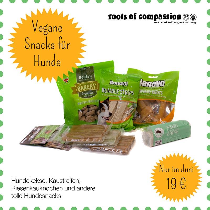 Hier seht ihr alle Hundesnacks, die es in unserem Juni-Angebot zusammen für nur 19 € gibt