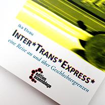 Inter*Trans*Express: Kurzgeschichten, Gedichten und Zeichnungen aus dem Alltag und Widerstand als Genderoutlaw