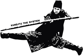 Kung Fu the system!