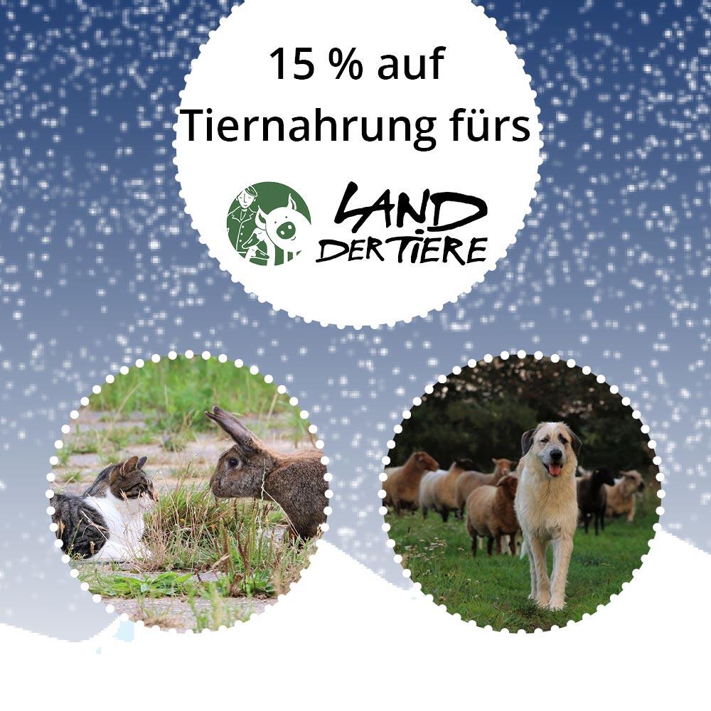 Hund und Katze vom Lebenshof für Tiere in Mecklenburg-Vorpommern