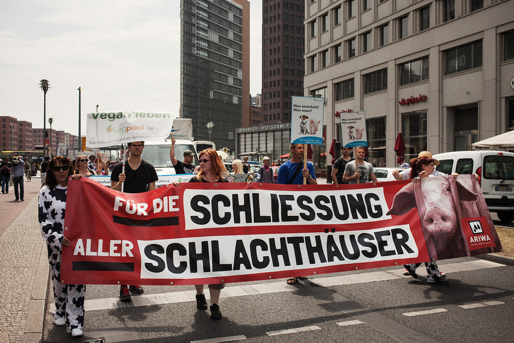 marsch_zur_schliessung_schlachhauser