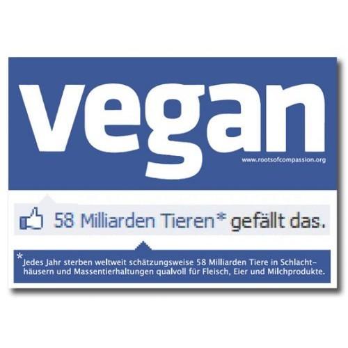 der Magnet zeigt ein typisches Facebookdesgin, jedoch mit Veganschriftzug