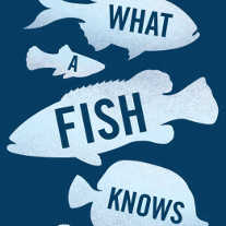 book cover of 'What A FIsh Knows' by Balcombe